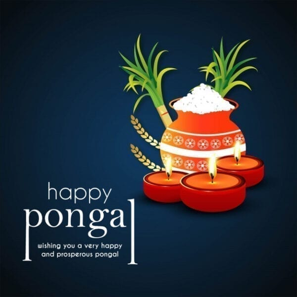 Happy Pongal 2021 Wishes, Quotes, Status And Messages With Images